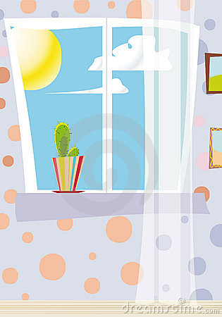 Cactus at the day window