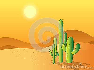 Cactus Desert Royalty Free Stock Photography Image 33134177