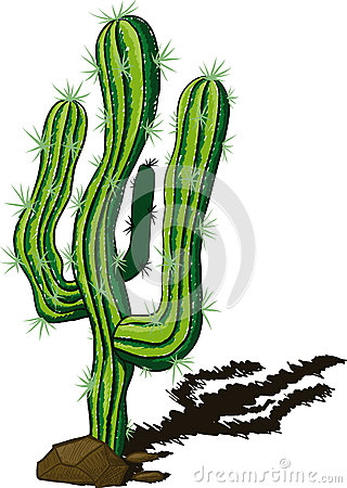 Free Cactus Doodle Royalty Free Stock Photography - 49619917
