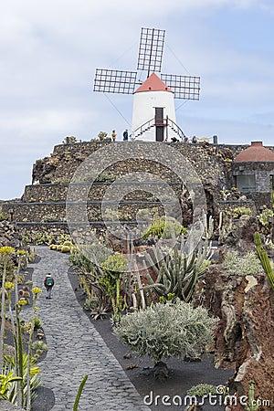 Free Cactus Garden In Lanzarote Royalty Free Stock Image - 52530856
