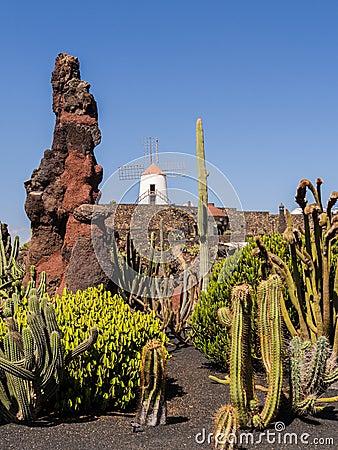 Free Cactus Garden In Lanzarote, Canary Islands. Stock Photo - 33462350