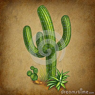 Cactus Mexican symbol