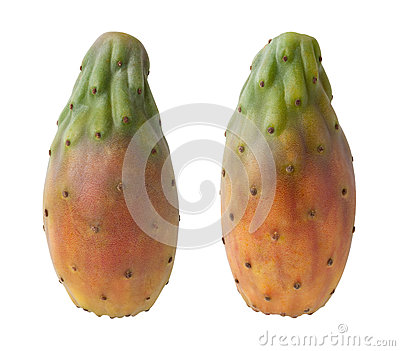 Cactus Pears Isolated with clipping path