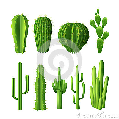 Free Cactus Realistic Set Royalty Free Stock Images - 56436799
