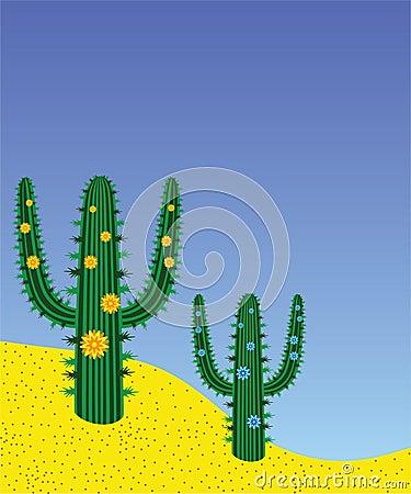 Cactuses in desert