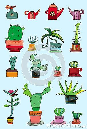 Cactuses in a pots -  set
