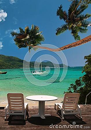 Cadeiras na praia do paraíso da palmeira.