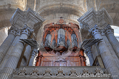 Cadiz cathedral organ