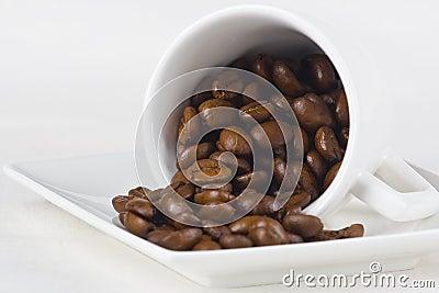 Café y habas