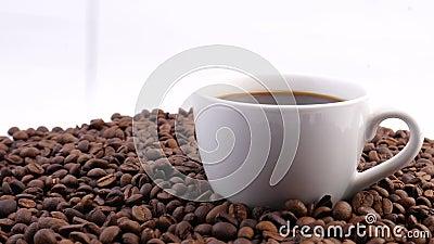Caffè e caffè Una tazza bianca di caffè sul tavolo con un fagiolo tostato Movimento lento archivi video