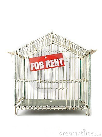 Cage for rent