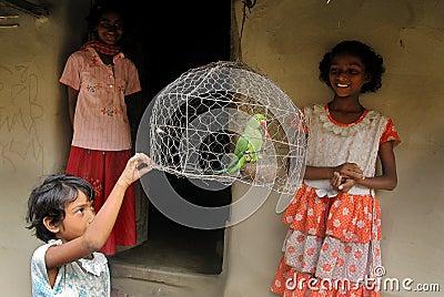 Caged Bird Editorial Photo