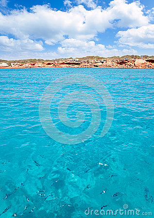 Cala Saona beach in formentera with fishes