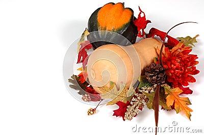 Calabaza del Butternut y de bellota en la configuración del otoño