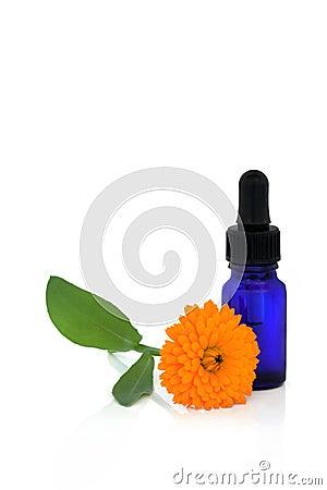 Calendula Flower Essential Oil