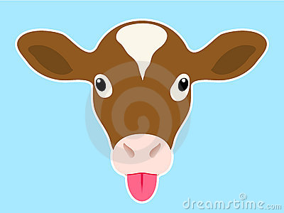 Calf head sticking out tongue