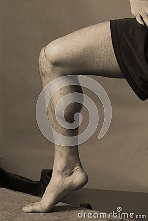 Calf Muscle