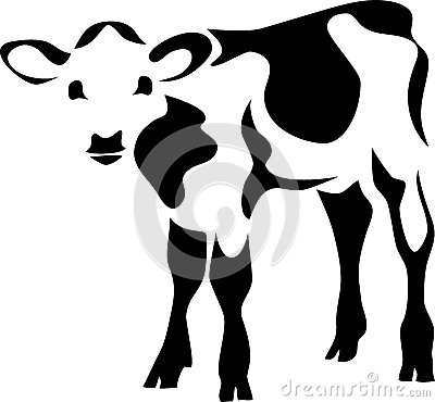 calf-stylized-black-white-illustration-3