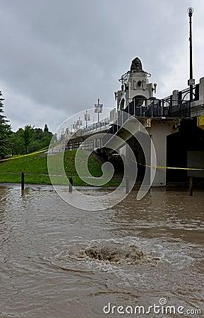 Calgary flod 2013 Redaktionell Arkivfoto