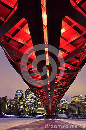 Calgary s skyline at night Editorial Image