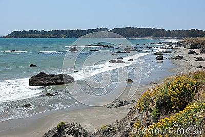 California Cetral Coast