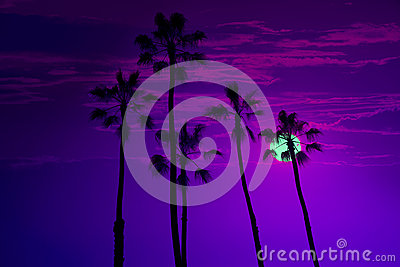 California high palm trees sunset sky silohuette