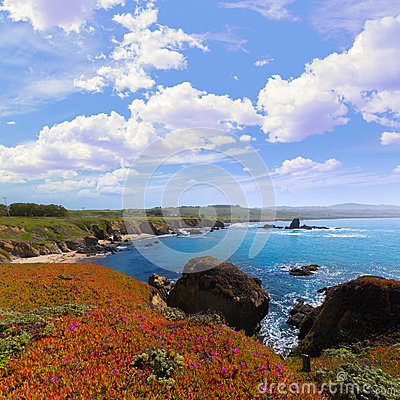 Free California Pigeon Point Beach In Cabrillo Hwy Coastal Hwy 1 Stock Image - 37500591