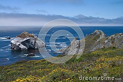 California wild coastline