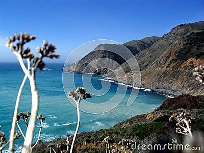 Californian Coast Highway 1