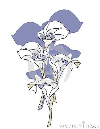 calla lilien blumen lizenzfreies stockbild bild 5197666. Black Bedroom Furniture Sets. Home Design Ideas