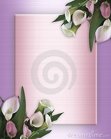 Free Calla Lilies Border On Pink Satin Stock Photo - 8355950