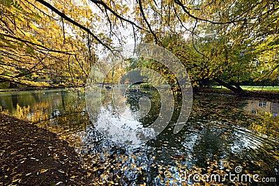 Callejón con las hojas que caen en parque de la caída