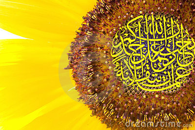 Calligraphy on sunflower