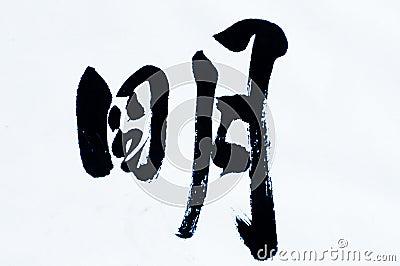 Calligraphykines