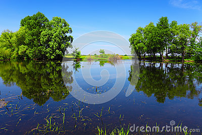 Calm river water and green trees as abstract gate