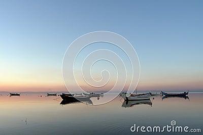 Calmness day, boats