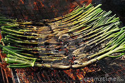 Calsots, catalan sweet onions