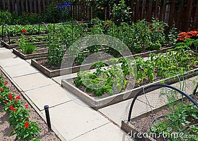 Camas levantadas do jardim vegetal
