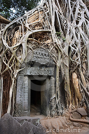 Free Cambodia - Ta Prohm Temple Ruins In Angkor Wat Stock Image - 16368431