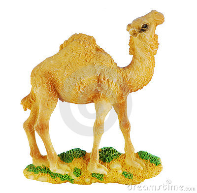 Free Camel Royalty Free Stock Photos - 6894548