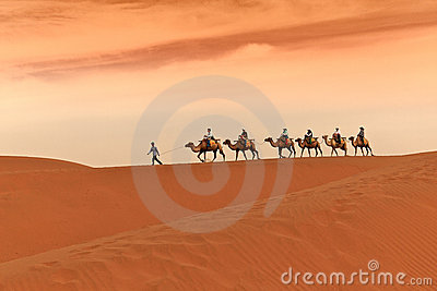 Camel Caravan in Desert Editorial Stock Photo