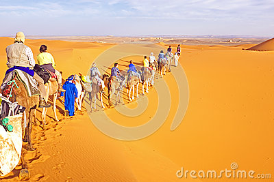 Camel caravan going through the sand dunes in the Sahara Desert Editorial Stock Image