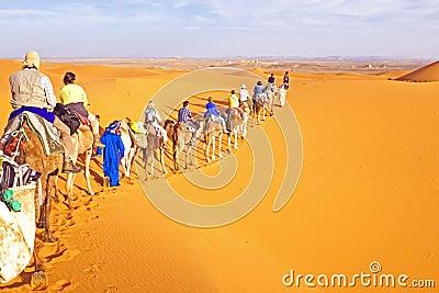 Camel caravan going through the sand dunes in the Sahara Desert Editorial Stock Image