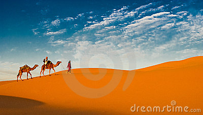 Camel caravan in the sahara desert Editorial Photo