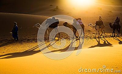 Camel caravan Editorial Photography