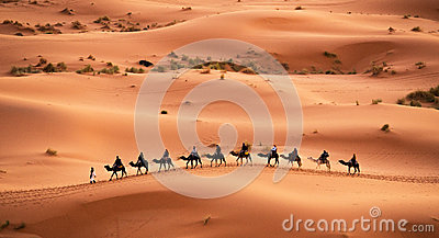 Camel caravan  Editorial Stock Image