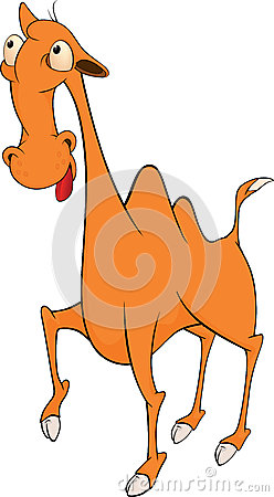 Camel cartoon