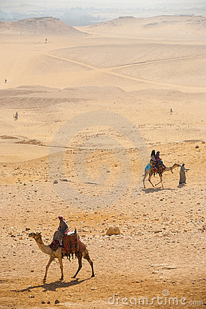 Camel Desert Tourists Giza Editorial Photography
