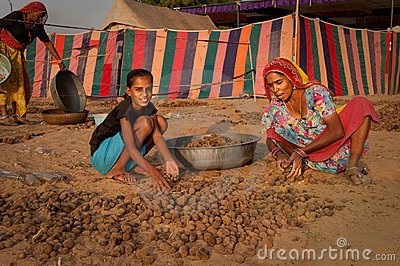 Camel dung collectors Editorial Photo