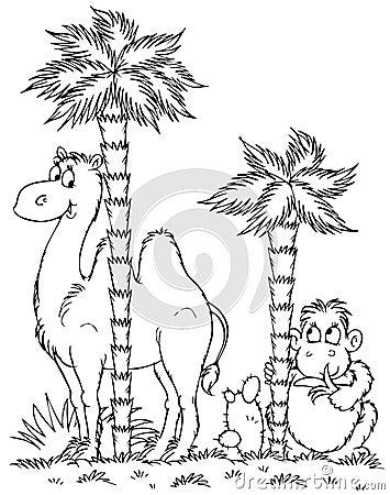 Camel and monkey